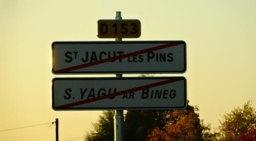 ST-JACUT-LES-PINS291016 (42).JPG