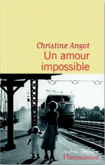 un_amour_impossible_angot_couverture.jpg