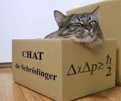 chatdes.jpg