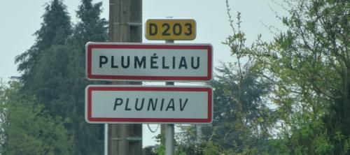 PLUMELIAU180415 (4).JPG